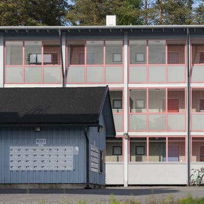 Mikkelin opiskelija-asuntoja Kalevankankaalla
