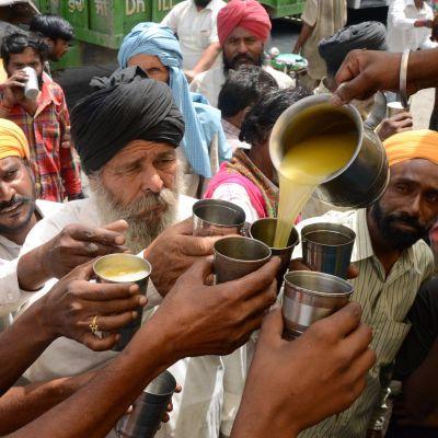 En indisk volontär delar ut juice till förbipasserande i Amritsar i Indien den 29 maj 2015.