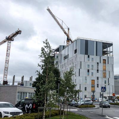 Ett höghusbygge på ett sjukhusområde.
