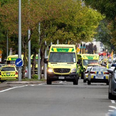 Masskjutning i Nya Zeeland