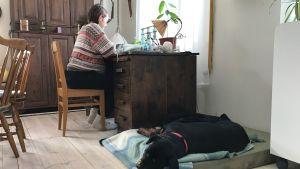 Carolina Beijar läser vid skrivbordet. Hunden Rocca ligger på golvet.
