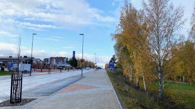 Korsholmsvägen med björkar till höger och butik längre fram.