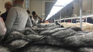 Skinnutställning i nyrenoverade Munsalagården