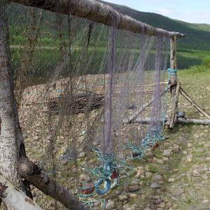 Lohiverkko roikkuu orrella Tenon rannassa