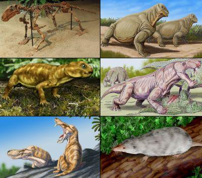 Däggdjurens förfäde, therapsiderna, från perioden perm.