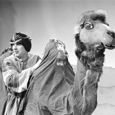 """Beduiiniksi pukeutunut Ismo Kallio """"Arabi-Ahabina"""" tekokamelin kyydissä ohjelmassa Iskelmäkaruselli vuonna 1962."""