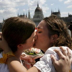 Ett homosexuellt par kysser varandra.