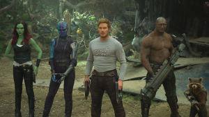 Fem av galaxens beskyddare står redo för strid.