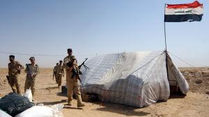 Irakiska soldater mellan Anbar och Karbala den 29 juni 2014.