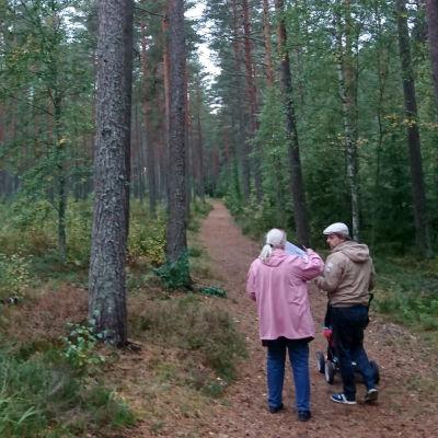 en vithårig kvinna i rosa jacka står och tittar i en karta och samtalar med en yngre man i vit keps och med barnvagn på stig i tallskog