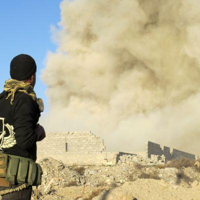 En medlem av regeringstrogna styrkor ser ut över Hoz-stadsdelen i Ramadi i Irak under regeringens offensiv mot IS