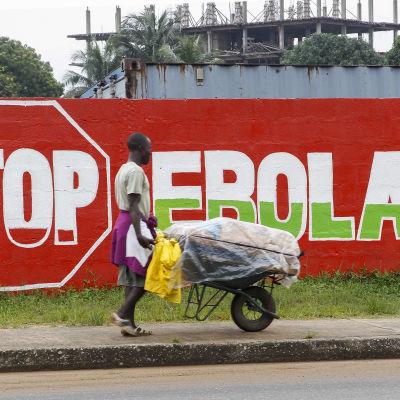 """En man går förbi en vägg med texten """"Stop Ebola"""" i Liberias huvudstad Monrovia den 6 oktober 2014."""