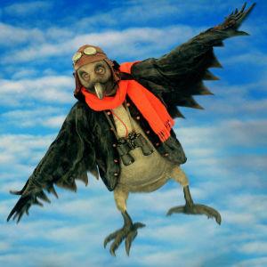 Den svarta fågel, 1998
