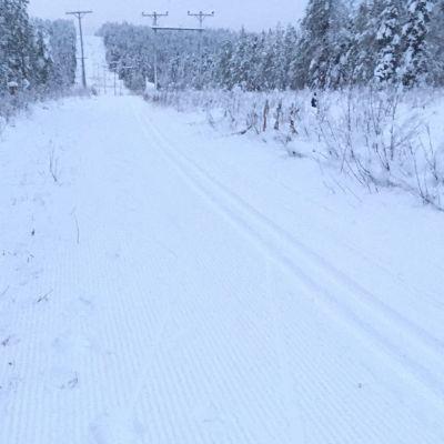 Juuri latukoneella ajettu hiihtolatu Rovaniemen Vennivaarassa 15. marraskuuta 2019.