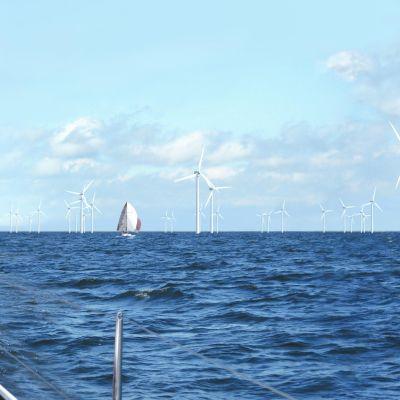 Vindmöllor ute i havet, en segelbåt mitt ibland dem i soligt väder. Ett bildmontage.
