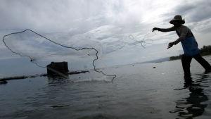 En man fiskar i Indonesien.
