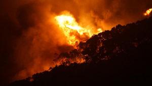 Brand nära Melbourne, Australien