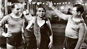 """""""Friikkejä"""" eli sirkuksen esiintyjiä Tod Browningin ohjaamassa kulttikauhuklassikossa Freaks (1932)."""