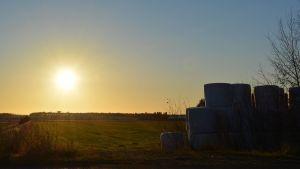 Solsken över Österbotten på morgonen.