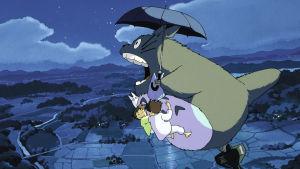 Kuva elokuvasta Naapurini Totoro