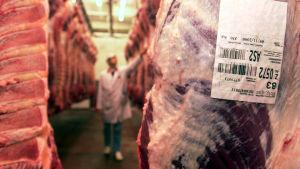 Nötkött i en produktionshall.