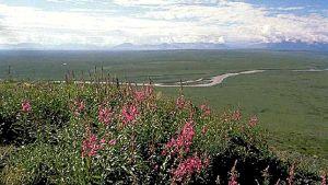 Naturreservat i Alaska