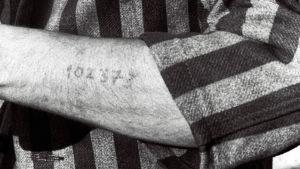 Tunnusnumero tatuoituna keskitysleirivangin käteen. Kuva elokuvasta Yö ja usva