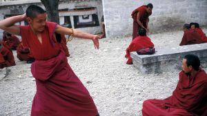 En tibetansk munk intar en pose under en religiös debatt vid klostret Sera i Lhasa.