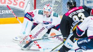 Kevin Lankinen, HIFK våren 2018.