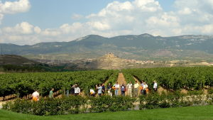 Riojan alueen viinitila