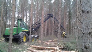 Skogsmaskin i skogen.