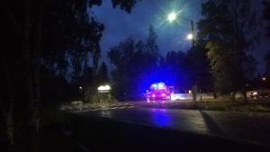 En brandbil står intill en omkullfallet träd.