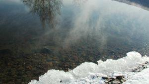 Ranta, jäätä ja vesi josta heijastuu taivasta ja puita