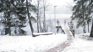 Vinterbadare på brygga