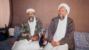 Osama bin Laden med sin efterträdare Ayman al Zawahiri år 2001.