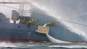 Japanskt valfångstfartyg nära Antarktis