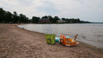 Bild av badleksak i form av en tiger vid vattenbrynet på en strand.