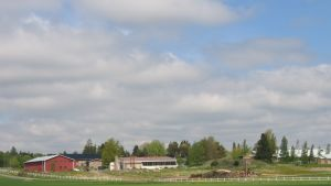 Brusaby