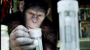 Det är premiärveckoslut för Rise of the Planet of the Apes