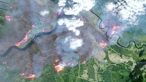 Satellitbild på skogbränderna i Alberta 9.5.2016