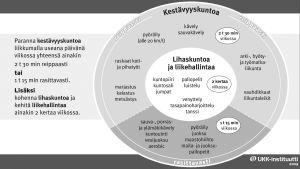UKK-instituutin liikuntapiirakka