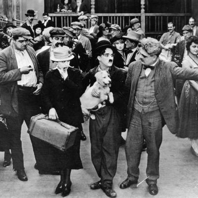 Chaplin A Dog's Life