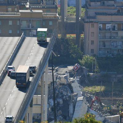 Genovan romahtanut silta.