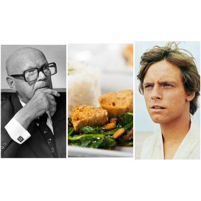 Bildcollage: Kekkonen, chicken vindaloo, Luke Skywalker