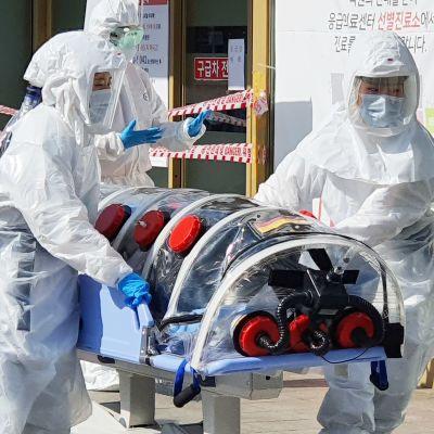 En infekterad patient tas in på ett sjukhus i Daegu där de flesta av över 150 smittofall har påträffats.