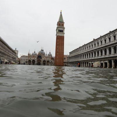 Markusplatsen är översvämmad.