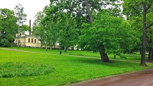 Observatorieparken i Helsingfors.