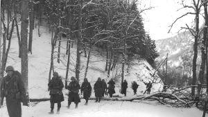 Sotilaita-lumisessa-metsässä