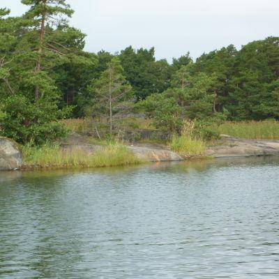 Gloskär är en del av Skärgårdsmiljöstiftelsens naturskyddsområde nordväst om Jussarö.