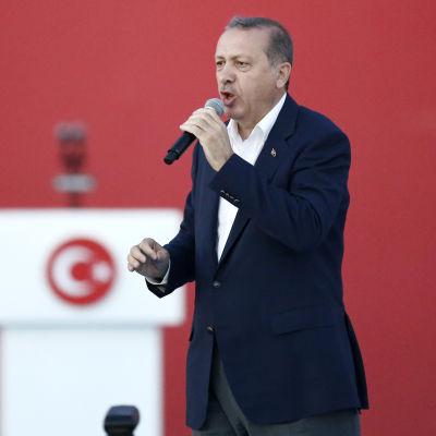 Turkiets president Recep Tayyip Erdoğan talade till sina anhängare vid massdemonstrationen i Istanbul den 7 augusti 2016.